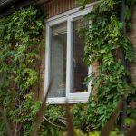 Casement Windows Bude